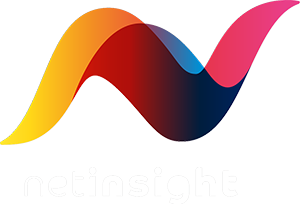 Net Insight Logo